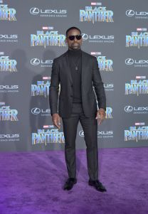 LOS ANGELES, CA - JANUARY 29: Sterling K. Brown arrives for the World Premiere of Marvel Studios' Black Panther, presented by Lexus, at Dolby Theatre in Hollywood on January 29th. (Photo by Charley Gallay/Getty Images for Lexus )